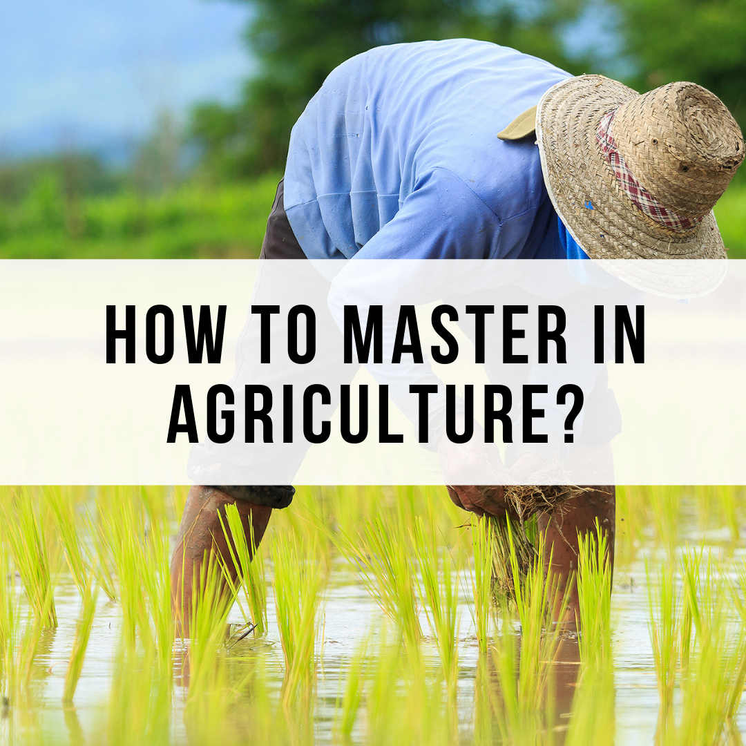 How to master in Agriculture? Guide To Farming